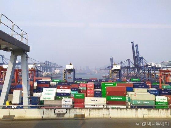 지난 24일(현지시간) 바라본 홍콩항 모습. 세계 각국에서 온 컨테이너와 그것을 옮기기 위한 크레인으로 빼곡하다. /사진=유희석 기자