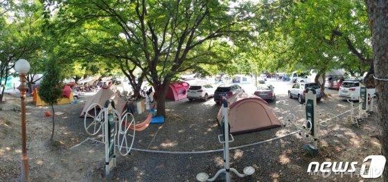 (포항=뉴스1) 최창호 기자 = 18일 경북 포항시 북구 기계면 봉좌마을 캠핑장을 찾은 피서객들이 나무 그늘 아래에 쳐 둔 텐트 안에서 더위를 피하고 있다. 봉좌마을 캠핑장에는 글램핑장과 물놀이장 등 편의시설이 갖춰져 있다. 2019.8.18/뉴스1  <저작권자 © 뉴스1코리아, 무단전재 및 재배포 금지>