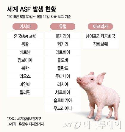 농장 주인 해외도 안갔는데…'돼지열병' 대체 누가 옮겼을까
