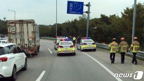 20일 오후 경기 평택화성고속도로 양감 나들목 인근 농장에서 말 세마리가 탈출해 고속도로로 난입했다./사진= 뉴스1