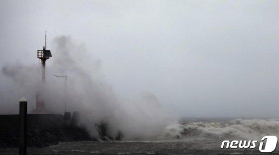 22일 제17호 태풍 '타파'의 영향으로 제주도 전역에 '태풍 경보'가 발효된 가운데 제주시 도두항 인근에 거센 파도가 치고 있다./사진=뉴스1