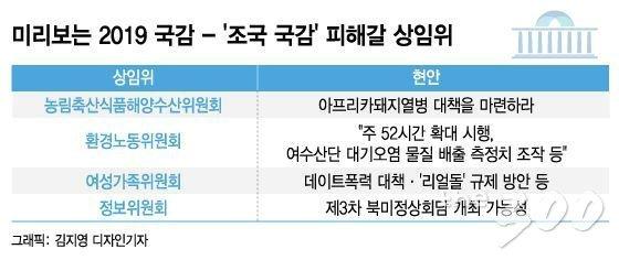 """[MT리포트] """"7개 국감장 소환""""…조국만 괴로운 게 아니다"""