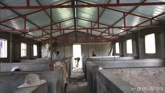 에티오피아 KOPIA센터에서 진행하고 있는 여성농업인 육성을 위한 복합영농 시범사업을 위한 양계장 모습 / 사진제공=티