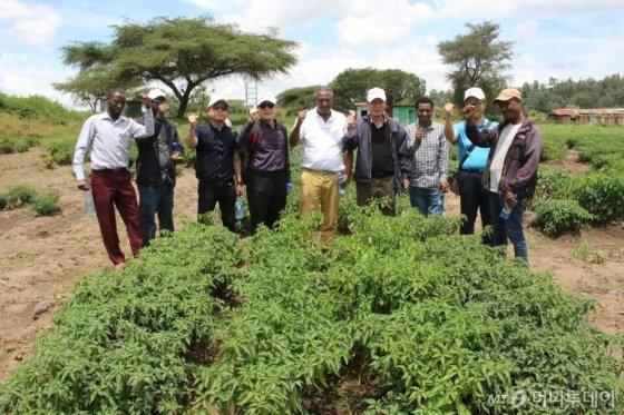 에티오피아 KOPIA센터 배도함 소장이 지난 2일 아디스아바바 인근 시험장에서 EIAR 관계자들과 함께 화이팅을 외치고 있다./사진=농촌진흥청