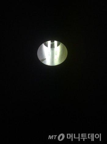불빛에 붙어 있는 나비. 이쪽에선 저쪽을 훤히 보고, 저쪽에선 이쪽을 못 본다. 악플을 보고 떠올린 생각이다./사진=남형도 기자