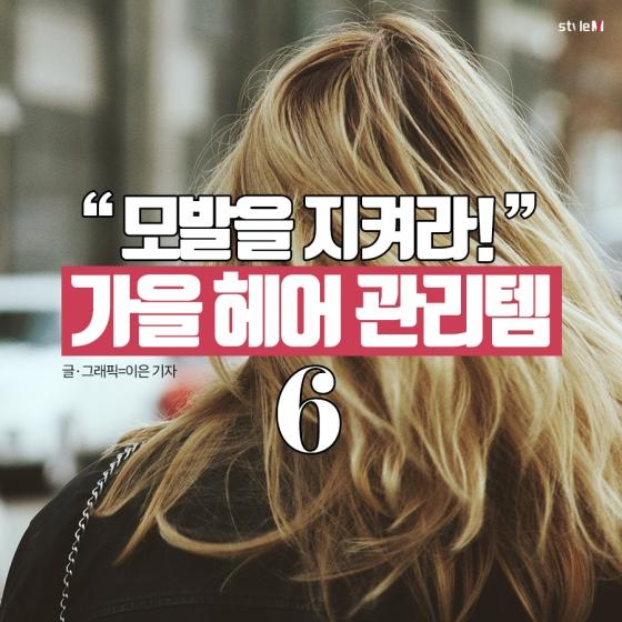 [카드뉴스] 위기의 모발, 구하려면?…가을 헤어 관리템 6