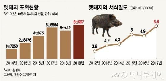 '목숨값 60억원' 멧돼지를 지명수배합니다