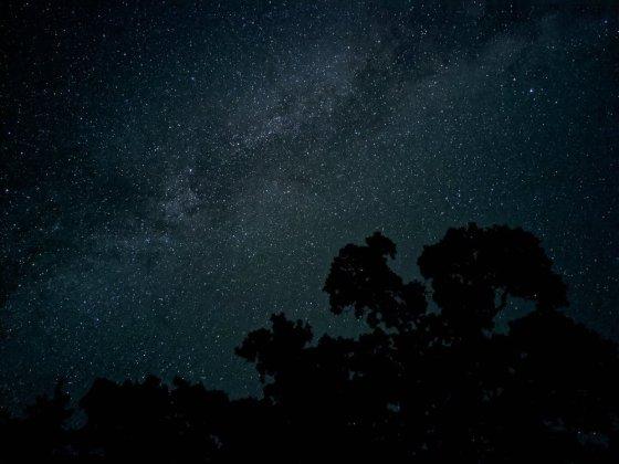픽셀4로 촬영된 천체 사진