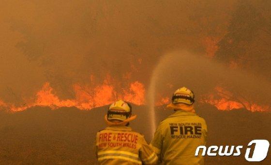 호주 뉴사우스웨일스주에서 산불 진화 작업을 벌이는 소방관들. © 로이터=뉴스1