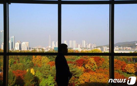 지난 1일 오후 서울 서초구 더케이호텔에서 바라본 서울시내가 단풍으로 물들어 있다./사진=뉴스1