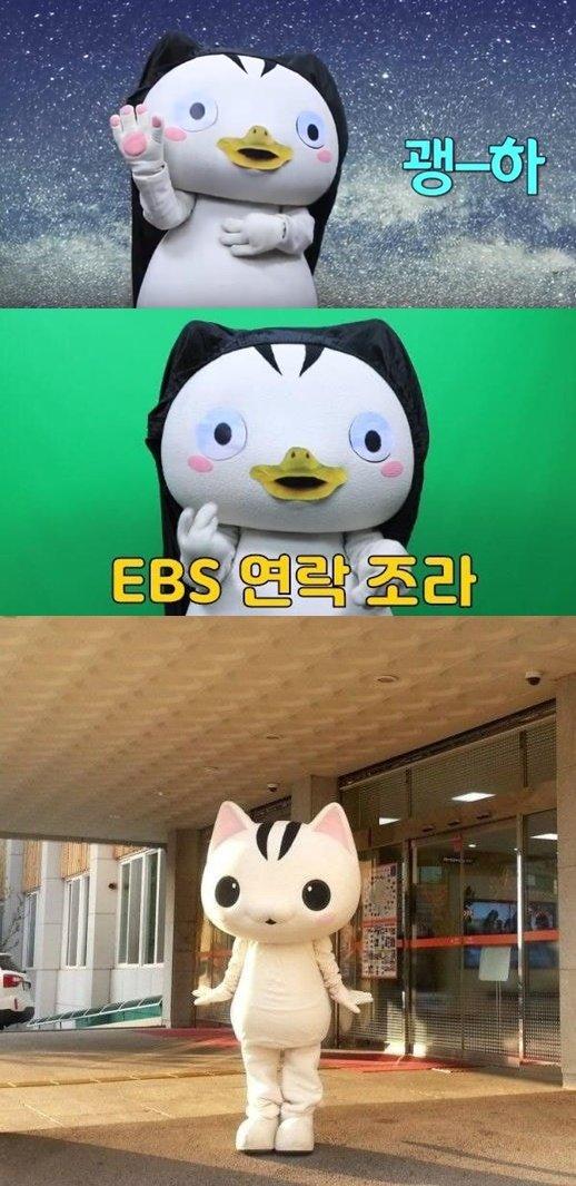 위- 괭수로 변한 고양고양, 아래- 고양고양의 원래 모습 /사진= 고양시청, 고양시 유튜브 채널 캡처본