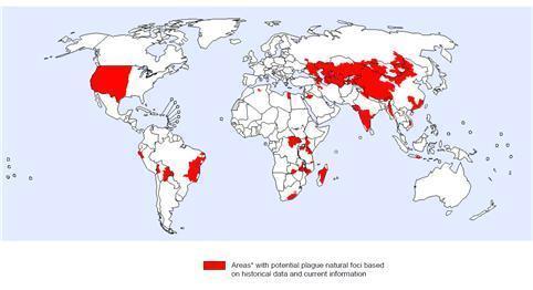 전 세계 페스트 발생위험지역 분포(2016년 3월 기준) /사진=세계보건기구(WHO)