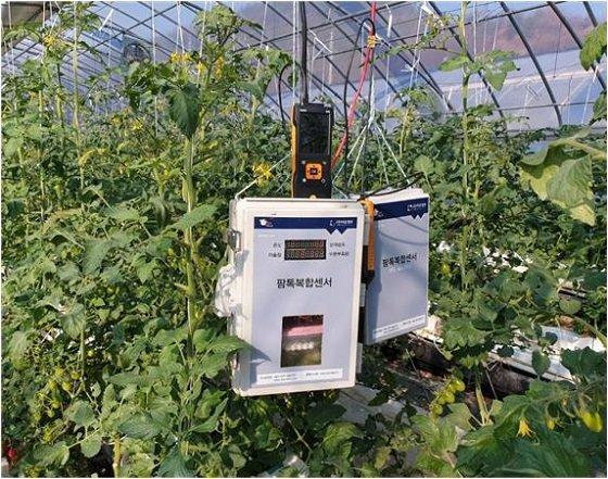 전북 다온정보의 스마트팜 시스템 '팜톡'(Farm Talk) 관련 장비/사진=다온정보