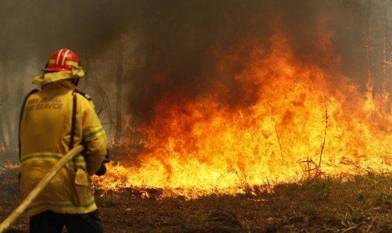 호주 뉴사우스웨일스주 올드바에 들불이 번져 지난 9일(현지시간) 한 소방관이 화재 진압을 위해 물을 뿌리고 있다. 당국은 동부 해안을 강타한 화재로 최소 2명이 숨지고 30여 명이 다쳤으며 150여 채의 가옥이 파괴됐다고 호주 당국이 밝혔다. 호주는 1965년 이후 최소 강수량을 기록하면서 최악의 가뭄을 겪고 있다./사진=뉴시스 2019.11.10