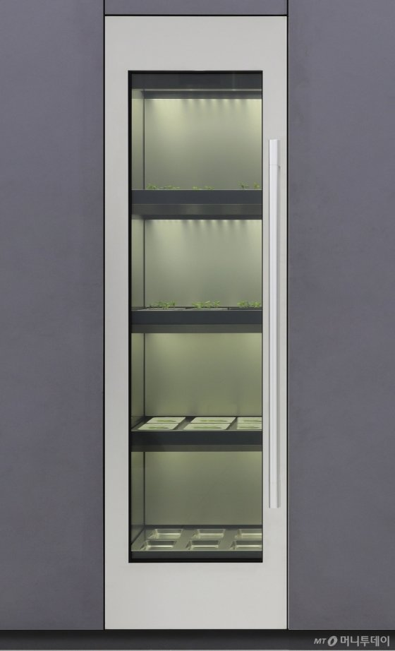 LG전자 식물재배기/사진제공=LG전자