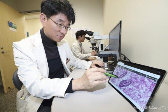 삼성서울병원 집무실에서 병리과 교수가 방금 촬영된 환자의 병리 데이터를 확인하고 있다./사진=KT