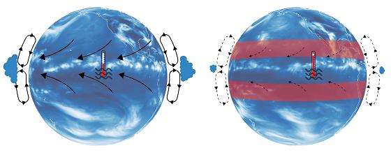 열대와 아열대 사이의 해들리 순환<br><br>(왼쪽) 현재 기후 조건에서의 해들리 순환 모식도. 양옆의 고리는 열대에서 상승하여 아열대에서 하강하는 공기를 나타내고, 적도로 향하는 화살표는 무역풍을 나타낸다. (오른쪽) 아열대 지역의 온도가 높아지면 해들리 순환이 약화되고(점선), 열대 지역에서 구름 양이 감소하며, 차가운 해수의 용승이 감소하게 된다. 그 결과 열대 지역의 온도가 상승하게 된다/자료=IBS