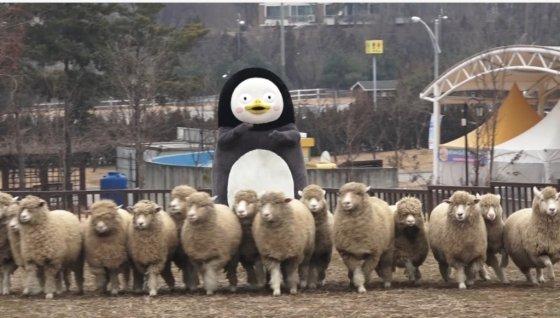 펭수가 친구 물범과 함께 농협 안성팜랜드에서 일일 직업체험을 했다. /사진=한국관광공사