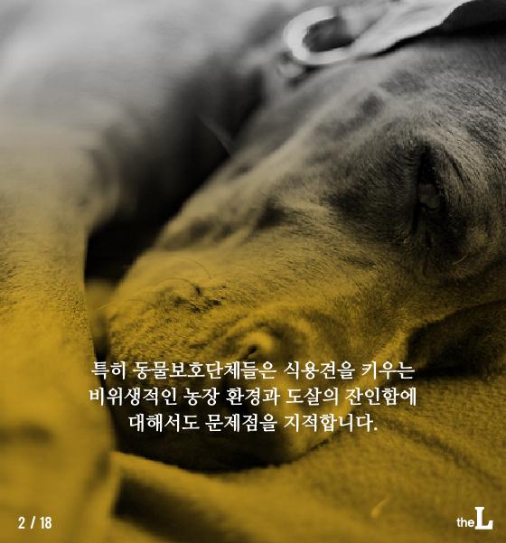 [카드뉴스] 동물 복지 위해 '한 걸음 더'