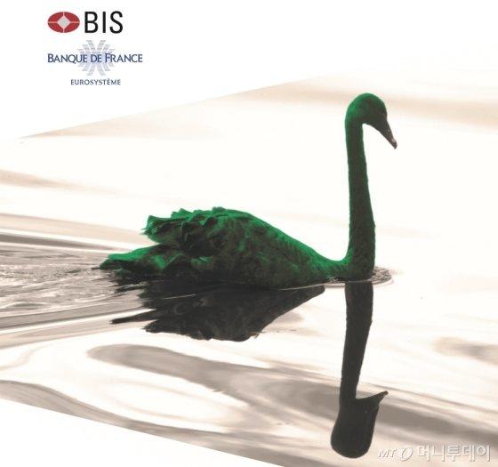 기후 변화가 경제에 미치는 리스크를 뜻하는 '그린스완'이 화두가 되고 있다/국제결제은행(BIS)의 '그린스완' 보고서 캡쳐