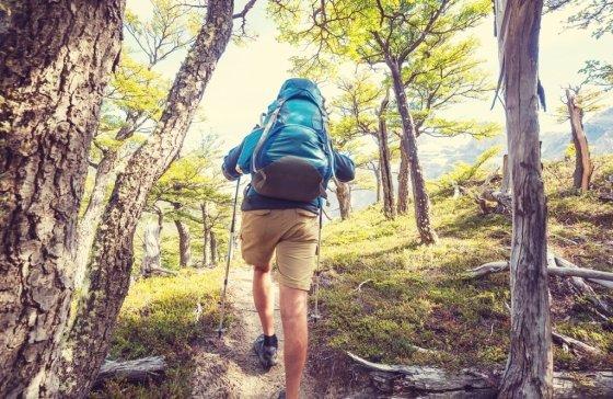 등산은 단시간 칼로리 소모에 좋은 활동이다/사진제공=이미지투데이