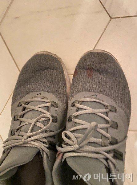 길냥이가 흘린 핏자국이 신발에 남았다./사진=남형도 기자