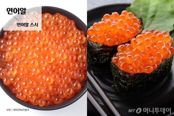 [바다정보다잇다] 톡톡 터지는 식감이 매력적인 생선알 모음