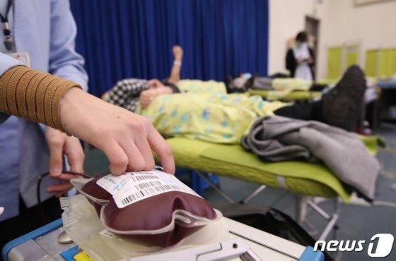 12일 오전 부산 연제구 부산시청 1층 대회의실에서 열린 '부산시 직원헌혈의 날'행사에 참가한 공무원들이 헌혈을 하고 있다./사진=뉴스1