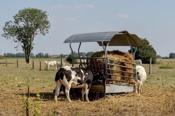 프랑스 남부 농업지역/사진=AFP