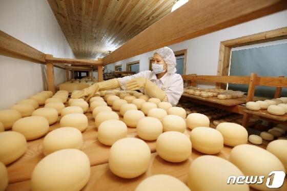 [사진] 치즈에 정성을 담아