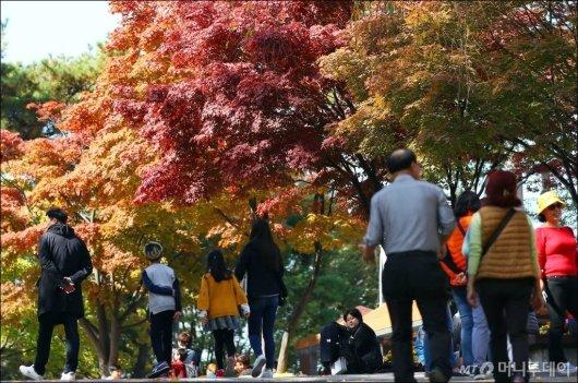전국이 맑은 날씨를 보인 서울 중구 남산 일대에 단풍이 울긋불긋 물들어간 가을./사진=김창현 기자