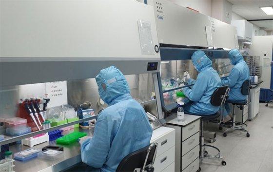 코젠바이오텍 연구원들이 코로나19 진단키트를 제조하고 있다/사진=코젠바이오텍