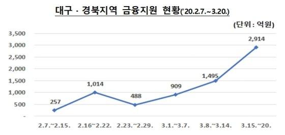 대구, 경북지역 코로나19 피해 관련 금융지원 현황 /그래프=금융감독원
