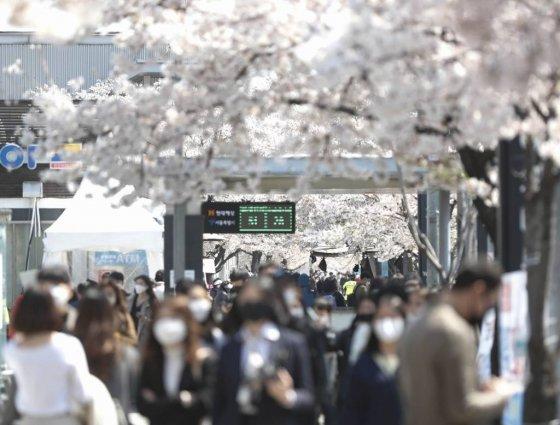 지난 5일 오후 서울 여의도 여의나루역 인근에 많은 상춘객들이 벚꽃을 보기 위해 한강 여의도공원을 찾은 모습./사진=뉴시스