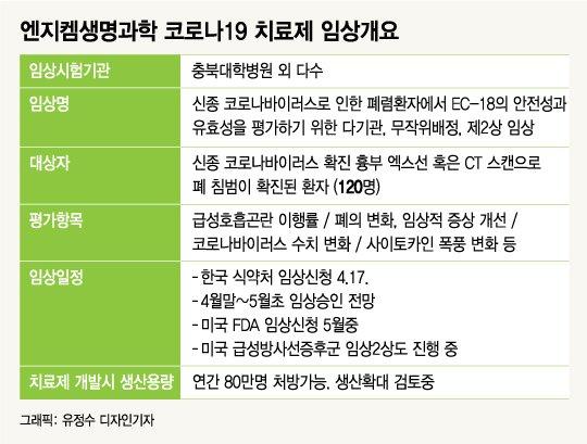 엔지켐생명과학 '코로나 韓·美임상성공' 대박내나