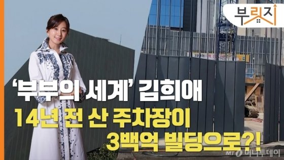 김희애가 14년전 산 주차장 '300억 빌딩'으로