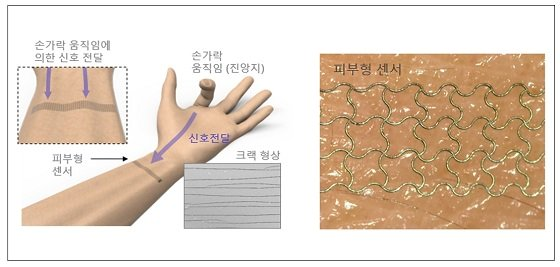 딥러닝된 피부형 센서 구성은 나노 입자를 레이저로 소결하여 크랙형상을 만들어 고민감 센서를 제작함. 손가락의 움직임을 마치 지진파 계측과 같이 손목에서 멀리 계측을 하여 딥러닝을 통해 신호에서 손가락 움직임을 추출함/사진=KAIST