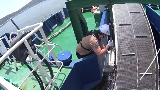 어딜가냐, 쓰레기 이놈./사진=영상을 잘 찍는 김주현 해양환경공단 울산지사 대리