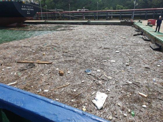 태풍에 휩쓸려 떠내려온, 바다 쓰레기. 육지가 아니다. 바다다./사진=해양환경공단 울산지사