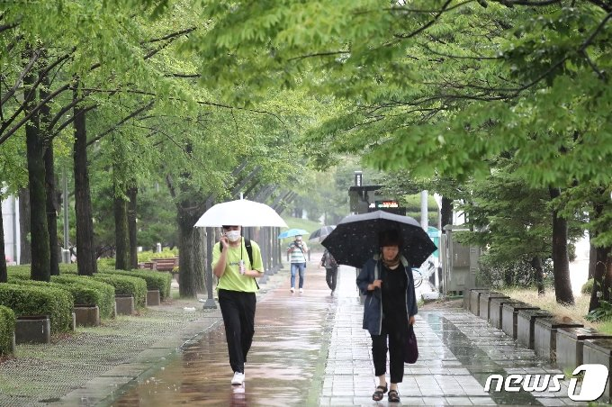 대전 서구 대전시청 인근에서 시민들이 우산을 쓰고 지나고 있다. 뉴스1 © News1 김기태 기자