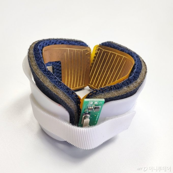 프록시헬스케어가 개발한 반려동물용 관절보호·치료기 시제품/사진제공=프록시헬스케어