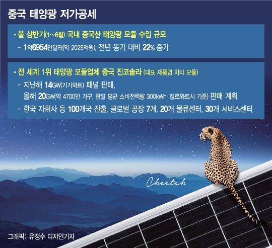 가격으로 중국 못 이긴다…'국산 태양광' 빛낼 무기는 기술력