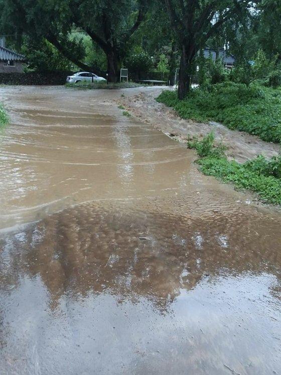 도로에 물이 차오른 전남 담양군 지곡리/사진=박경담 기자