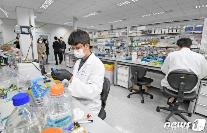 (용인=뉴스1) 조태형 기자 = 13일 오후 경기도 용인시 GC녹십자에서 연구원들이 신종 코로나바이러스 감염증(코로나19) 완치자 혈장을 활용한 혈장 치료제 개발을 하고 있다. 2020.5.13/뉴스1
