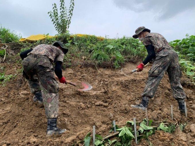 12일 정오 경기도 안성시 죽산면 부근 수해지역에서 복구 작업을 벌이고 있는 55사단 군병력./사진=이강준 기자