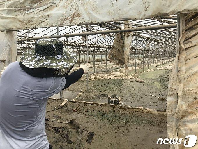 섬진강 범람으로 삶의 터전인 비닐하우스 침수피해를 입은 이근호씨(43)가 13일 진흙탕으로 변한 자신의 오이 시설 하우스 내부를 가리키고 있다.2020.8.13 /뉴스1