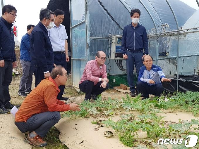 진천·옥천 침수 농가 찾은 유찬형 농협 부회장 지원 약속