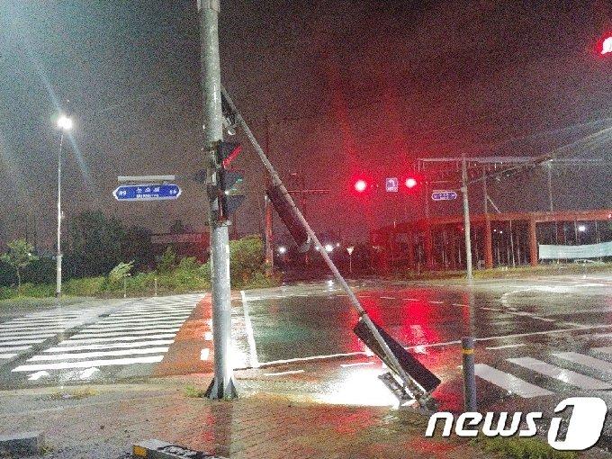 7일 오전 태풍 '하이선'의 영향으로 전남 광양시 마동의 한 도로 신호등이 부러졌다는 신고가 광양시에 접수됐다. 광양시는 현재 가로수 정비 조치를 취하고 있다.(광양시 제공)2020.9.7 /뉴스1 © News1