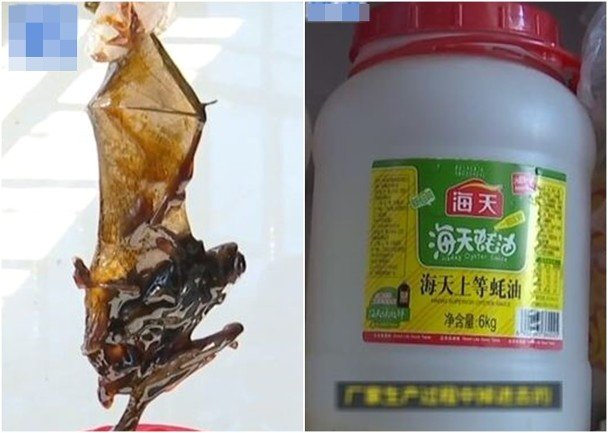 궈씨네 가족이 먹던 굴소스 통에서 나온 박쥐(왼쪽)와 굴소스 통. /사진=바이두