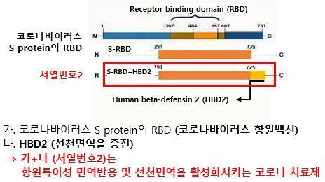 아이큐어가 개발 중인 코로나 치료제 'RBD-HBD2' 구성도/사진제공=아이큐어